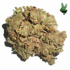 find weed suppliers online,where to get cheap marijuana securely online