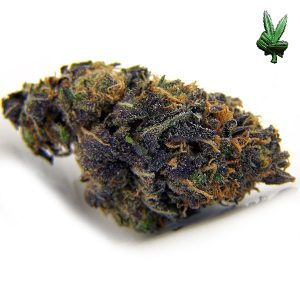 Cannabis Online Dispensary,buy kush for sale